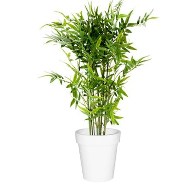 Bamboo Plant Artificial